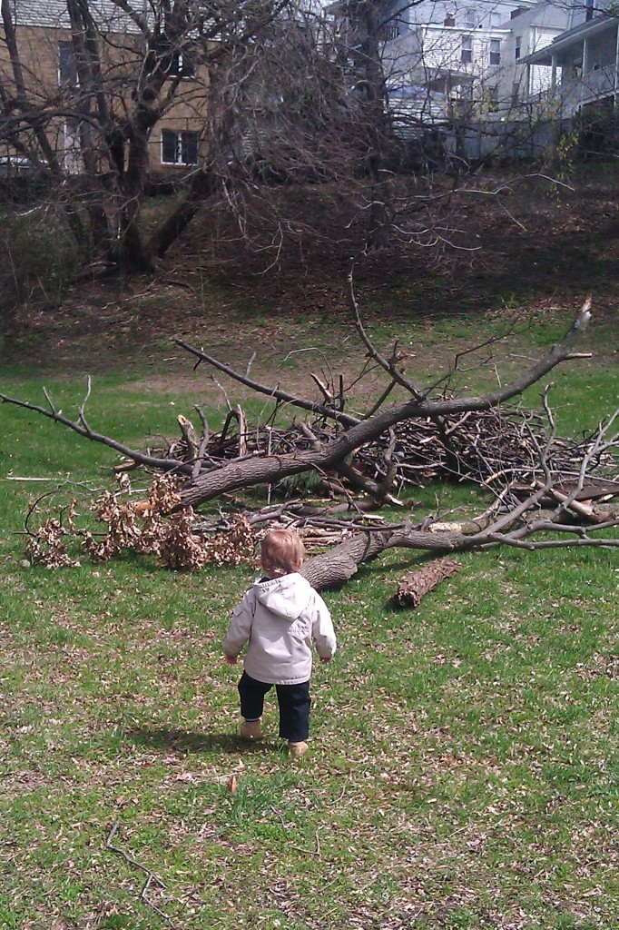 "After reading the Atlantic cover story about overprotected kids, I've been pining for an ""adventure playground."" When I saw this giant pile of sticks at our park, I steered Soren in that direction hoping it would be the equivalent of the ""junk"" play areas in the UK."