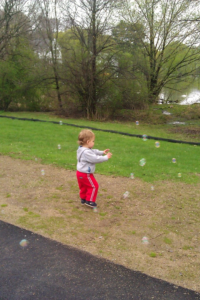 Soren loooves bubbles. And he fearlessly hunts down the geese and ducks by the pond, so we combined it all one afternoon.