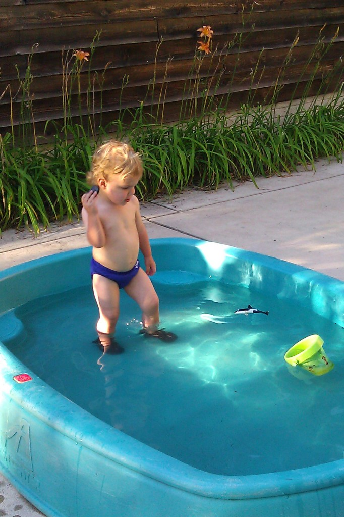 The afternoon brought us backyard heaven -- an empty pool, perfect for throwing rocks.