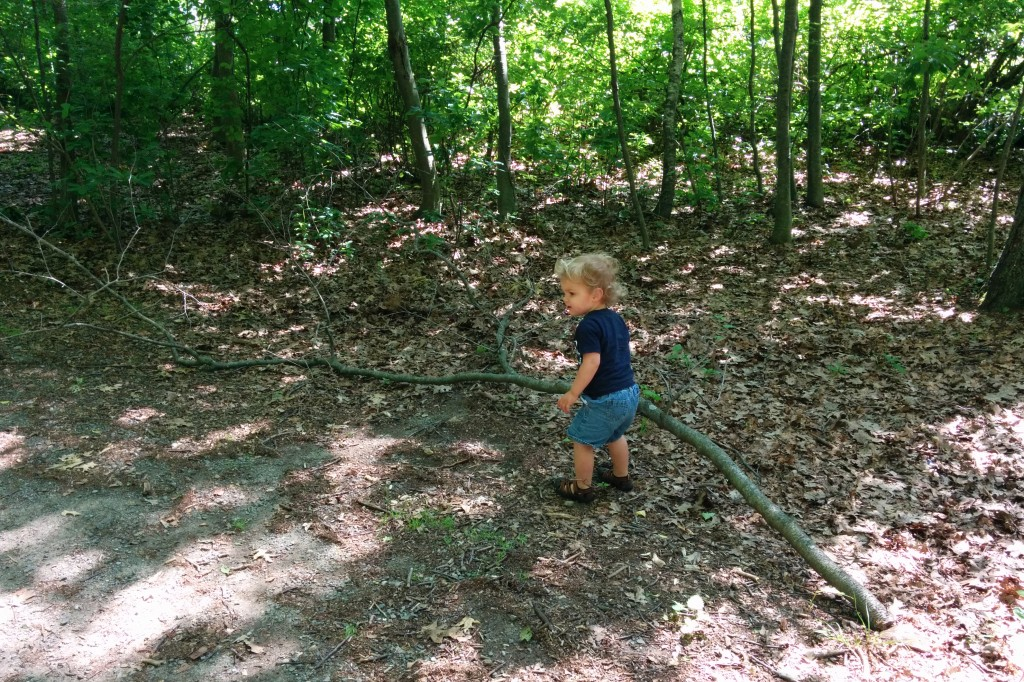 One Saturday Tim took Soren to the grocery store and on a nature walk. Soren is a lover of sticks of all sizes, and he took a particular liking to this one.