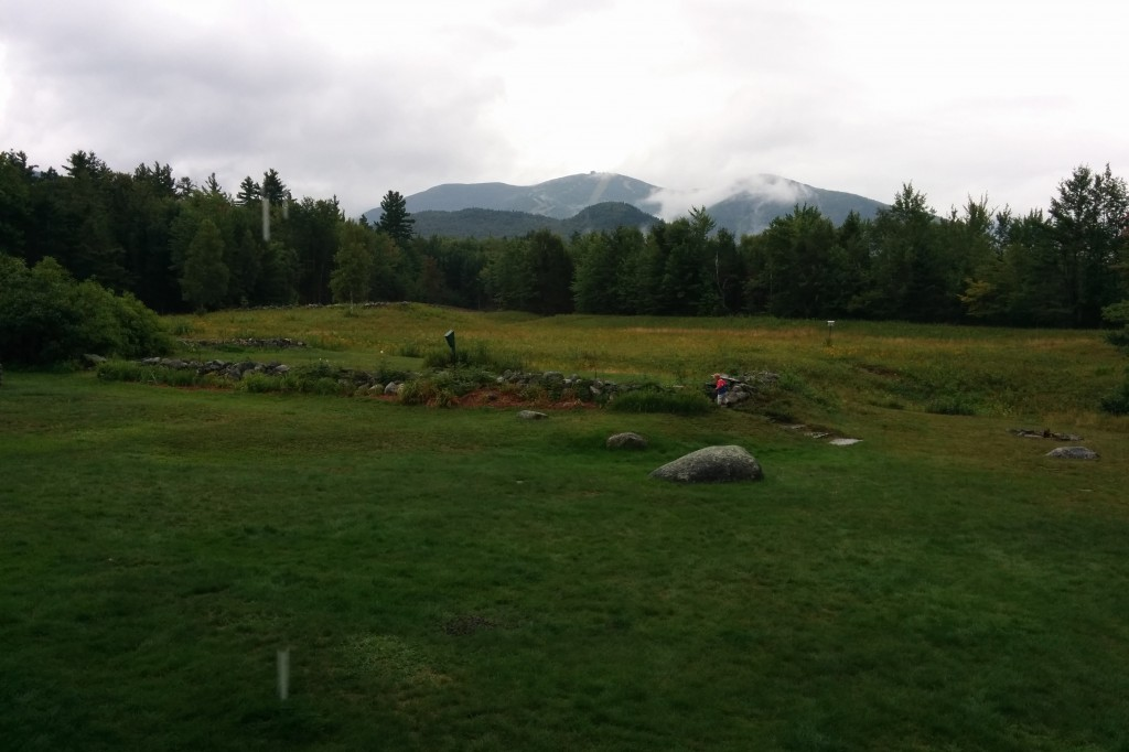Our New Hampshire back yard.
