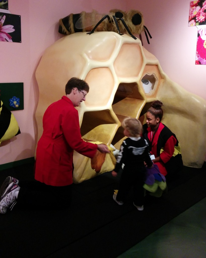 The museum has an exhibit with live bees, and in the children's discovery room there is a giant model of a beehive. These two employees spent about 30 minutes with Soren, running through the life of a honeybee over and over again.