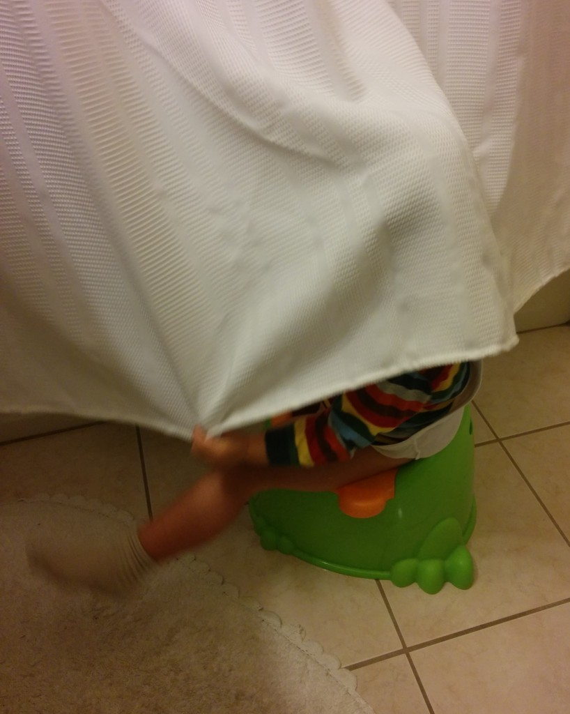 This is how Soren feels about going on the potty. I want to hide my head every time I think of toilet training too.