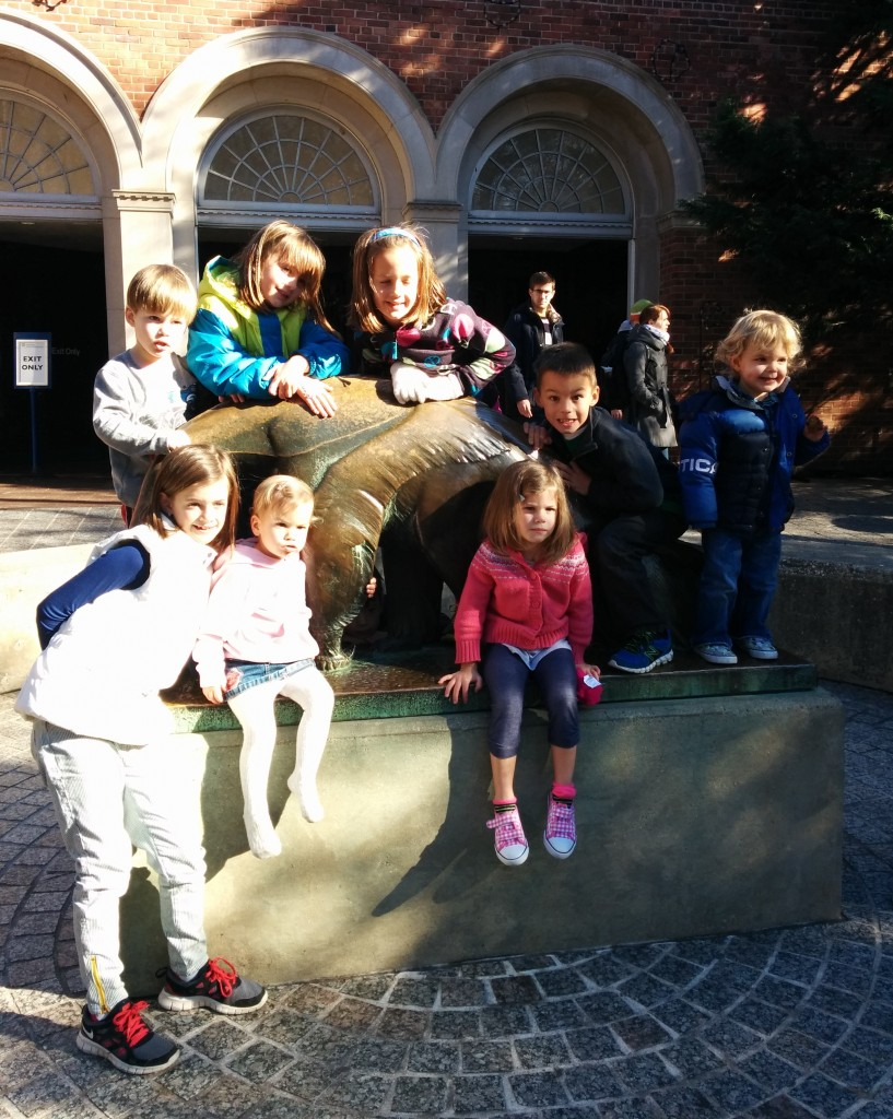 The 26th was the perfect day for a trip to the zoo. Sunshine, 50 degrees, and lots of active animals. All nine cousins are pictured here, although Everett is hard to spot beneath the anteater.