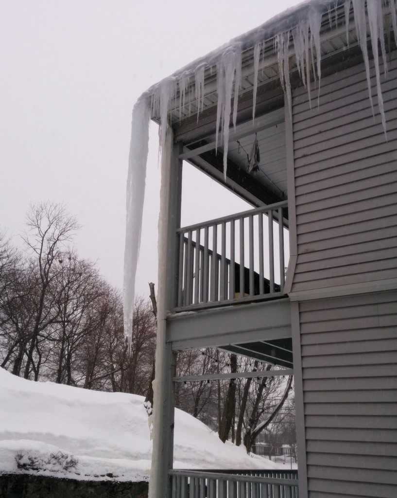 Icicles can be both beautiful and terrifying. This one hung from our neighbor's roof for a solid month before falling recently. The picture doesn't do it justice, but it was about 10 feet long!