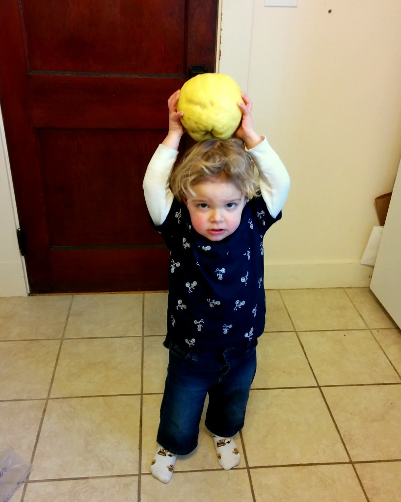 Soren is wild about grapefruits. Great-grandma and great-grandpa Hepp have sent us a couple boxes of their amazing Arizona-grown fruit. We're spoiled!