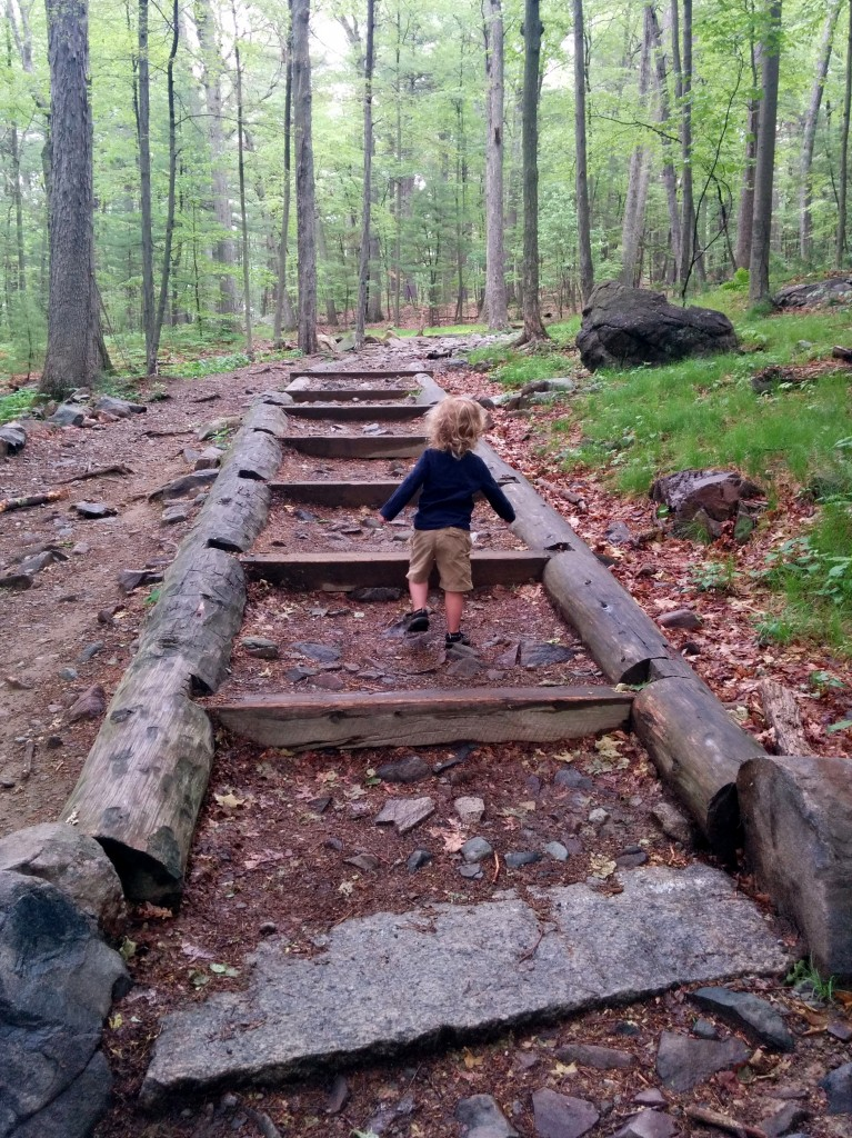 Tim and Soren went for a Blue Hills hike one Saturday morning during my gym time.