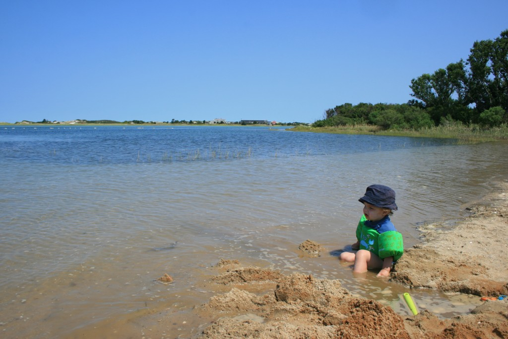 The sand at Gray's is a little rocky, but Soren didn't seem to mind.