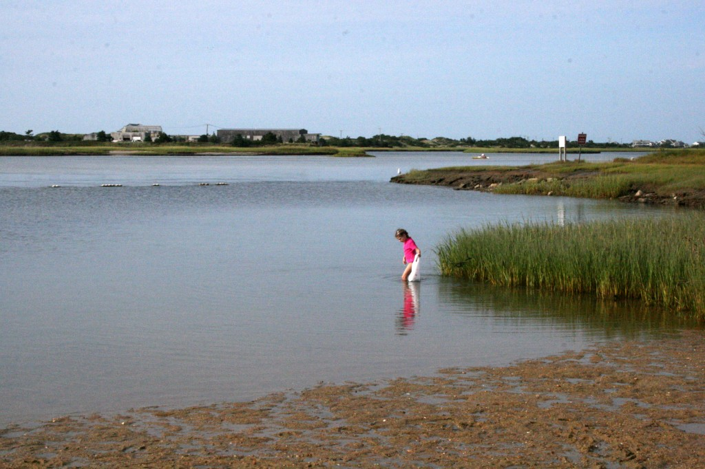 Shallow water for treasure-finding.