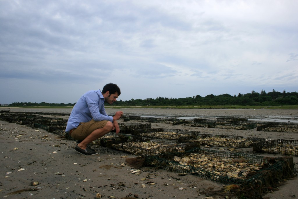 The paths took us to the beach, where we inspected the oyster beds.