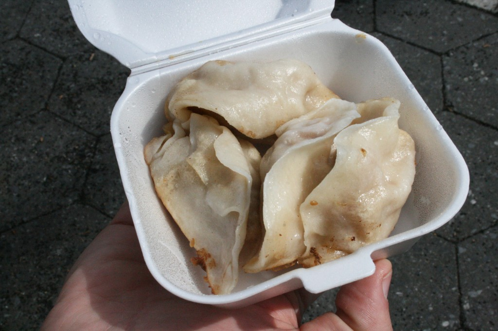 vanessa's dumplings new york