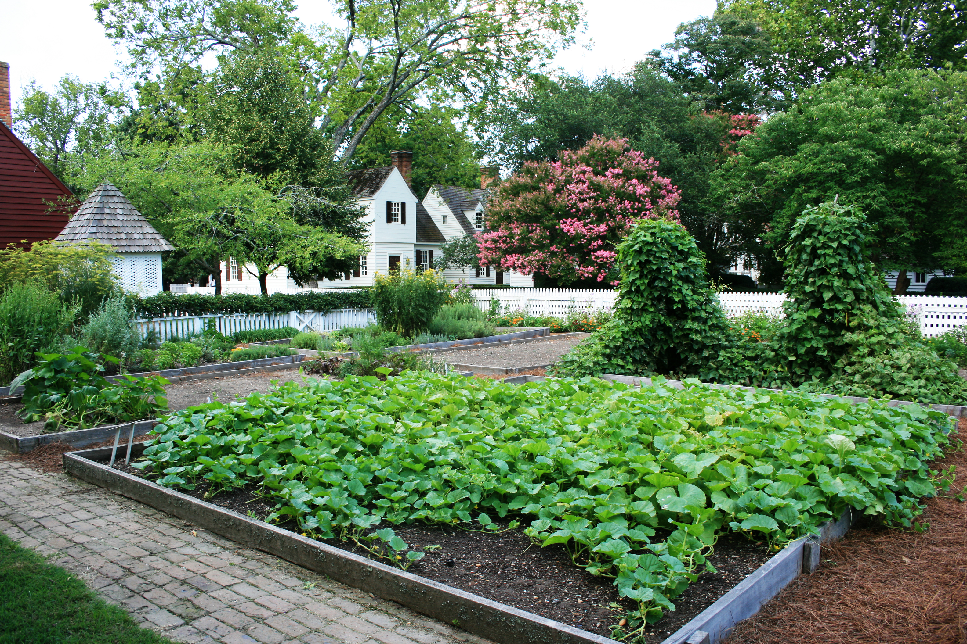 A pretty backyard garden in williamsburg virginia my for Backyard garden